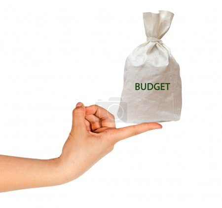 Bag with budget