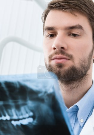 Dentist examines the x ray image