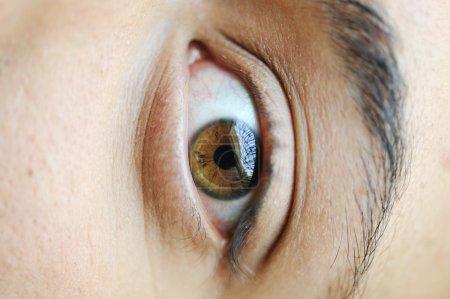 Colored male eye extreme macro