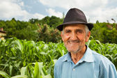 Starší zemědělce s kukuřičné pole v pozadí