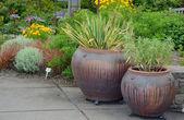 Two garden pots