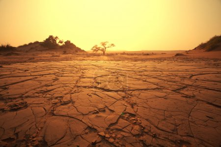Dead valley in Namibia...