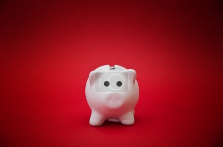 Piggy money bank