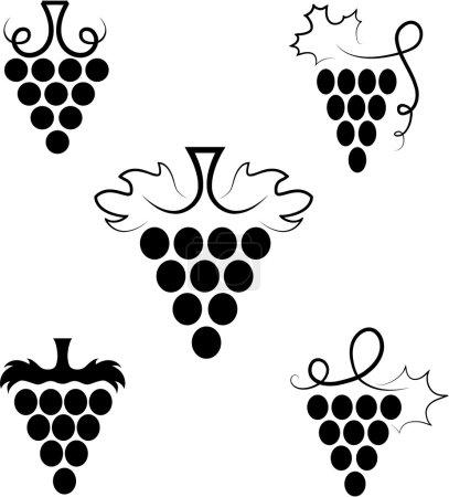 Illustration pour La branche stylisée du raisin aux feuilles - image libre de droit