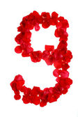 Velmi romantické číslo růží