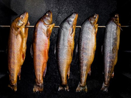 Smoked fish in a smoker.