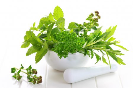 Photo for Fresh herbs from garden in the mortar - Royalty Free Image