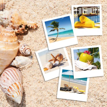 Photo for Pola photography on the sand of a beach in summer - Royalty Free Image