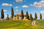 Tuscan farmhouse and cypress trees.