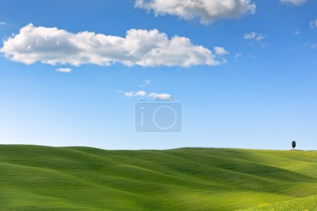 Photo for Outdoor green field view with blue sky and clouds. Tuscan Val d'Orcia background - Royalty Free Image