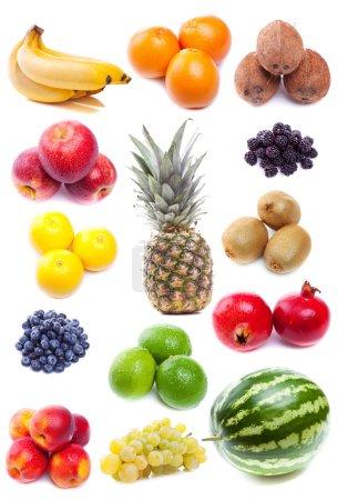 Photo pour Collection de fruits tropicaux frais sur fond blanc - image libre de droit
