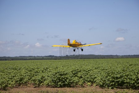 Centered Crop Dusting Plane