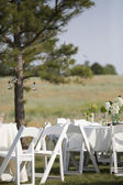 Outdoor Country Reception
