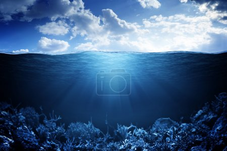 Photo for Sky, waterline and underwater background - Royalty Free Image