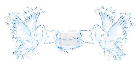 Photo pour Colombe fabriqué à partir de projections d'eau isolées - image libre de droit