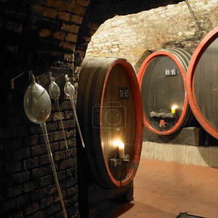 Wine cellar, Litomerice, Czech Republic
