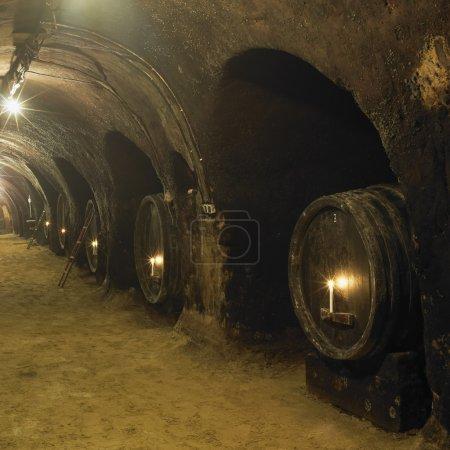 Wine cellar, Winery of Oldrich Splichal and Jitka Splichalova, N