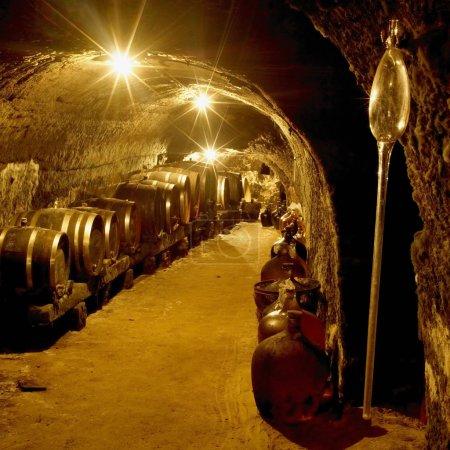 Wine cellar, Vrba Winery, Vrbovec, Czech Republic
