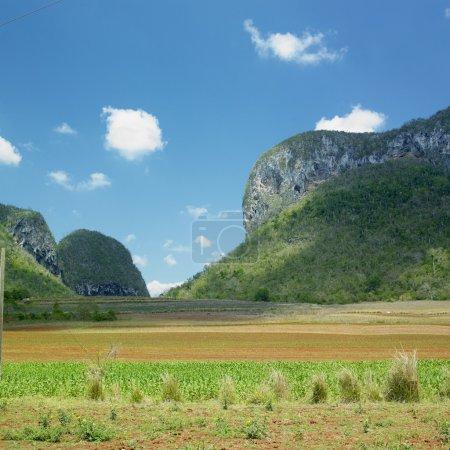 Photo pour Vinales Valley, province de Pinar del Rio, Cuba - image libre de droit