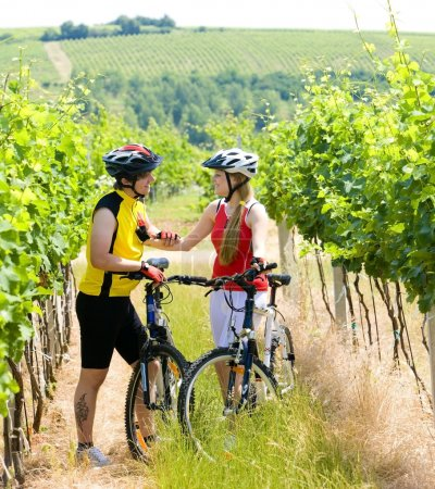 Photo for Bikers in vineyard, Czech Republic - Royalty Free Image