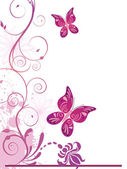 Vector illustration of colorful floral elements flowers and butterflies