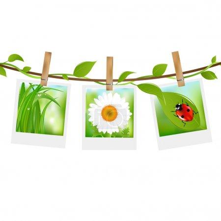 Ilustración de Fotos de verano con pinzas para la ropa, aislados sobre fondo blanco, Ilustración de vectores - Imagen libre de derechos