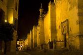 Mezquita of Cordoba at night.