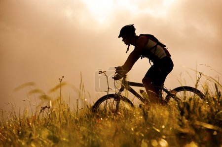 Photo for Healthy fit man rides his mountainbike outdoors, carefree bicycle fitness - Royalty Free Image