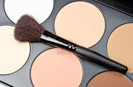Professional makeup brush and cosmetics...