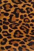 Leopardí tisku vzorek
