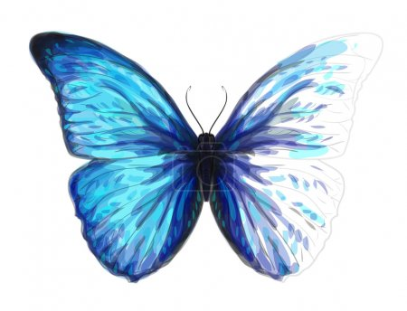 Butterfly Morpho Anaxibia. Unfinished Watercolor drawing imitat