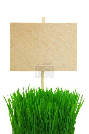 Foto de Letrero de madera vacía con verde la hierba del trigo / aislado en blanco - Imagen libre de derechos