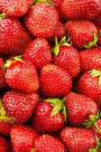 čerstvé jahody