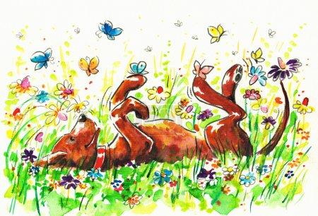 Photo pour Chien heureux sur une prairie avec des fleurs et des papiers.Photo que j'ai créé avec des aquarelles . - image libre de droit