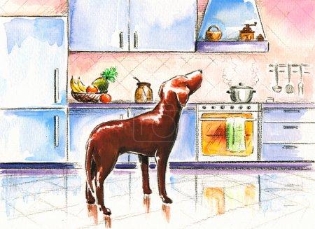 Photo pour Chien brun dans la cuisine.Photo que j'ai créé avec des aquarelles . - image libre de droit
