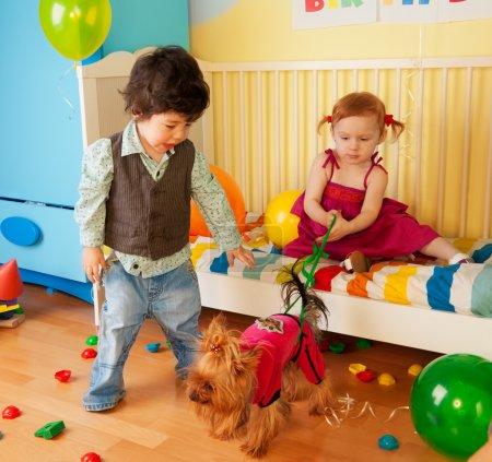 Photo pour Enfants jouant avec chien et ayant partie - avec les jouets et les ballons autour - image libre de droit