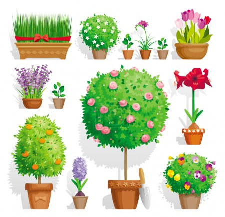 Illustration for Set of pot plants with flowers and leaves - Royalty Free Image