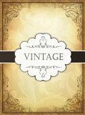 Vintage background with ornamental frame Vector illustration E