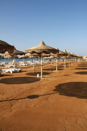 Beach at Red Sea