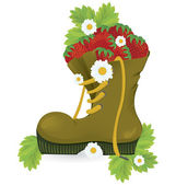 Strawberries old shoe and daisy flowers