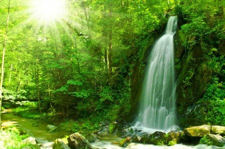 Photo pour Belle chute d'eau à travers la forêt verte - image libre de droit