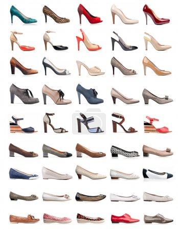Photo for Collection of various types of female shoes over white - Royalty Free Image