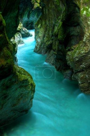 Tolminka alpine river in Slovenia, central europe