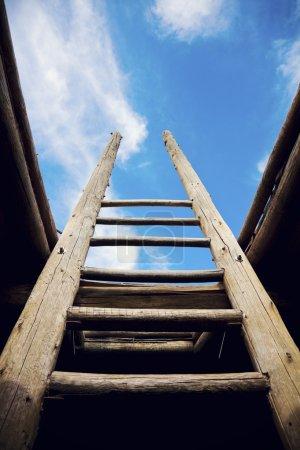Ladder - the symbol of the career steps