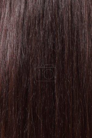 Hair sleek brown-haired female