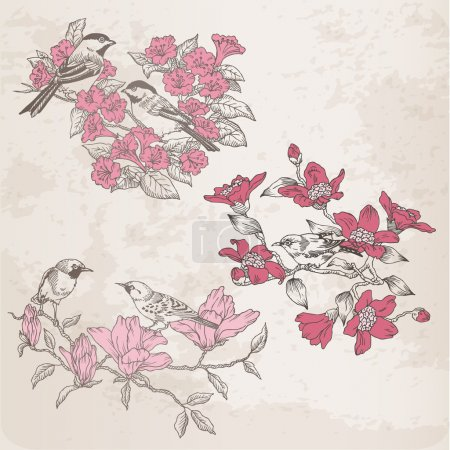 Retro Illustrations - Flowers and Birds - for design in vector