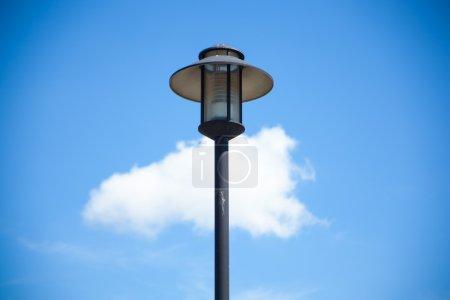 Light poles.