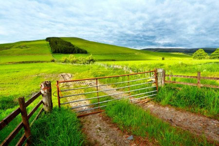 Photo for Spring rural landscape with a fence, Scotland - Royalty Free Image