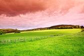 Beautiful Scottish rural landscape