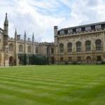 University quadrangle and lawn...